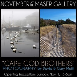 November at the Maser Gallery